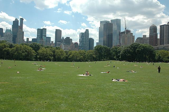 Sheep's Meadow in the sunshine